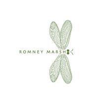 Dragonfly Green Logo