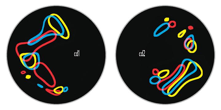 TM 36 disc layouts 2