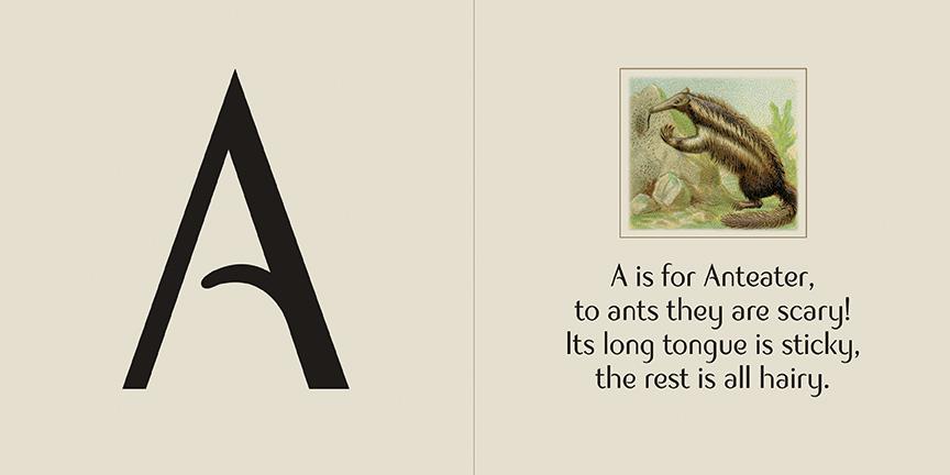A Anteater spread A