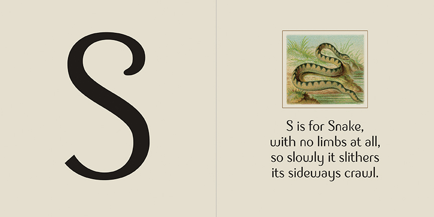 S Snake spread