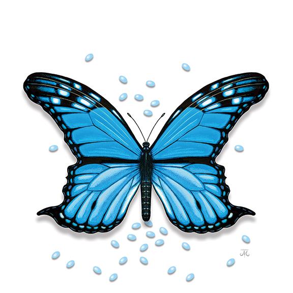 hr-block-butterfly-4