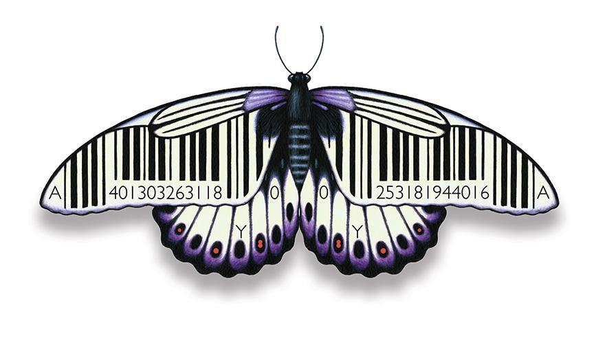 Dungeness card Barcode Evolution