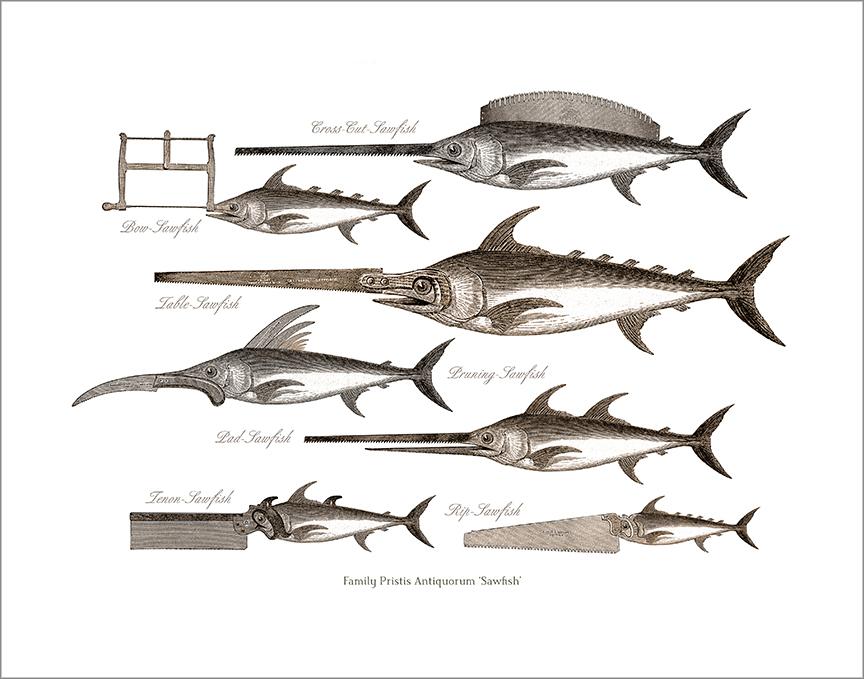 Sawfish 2