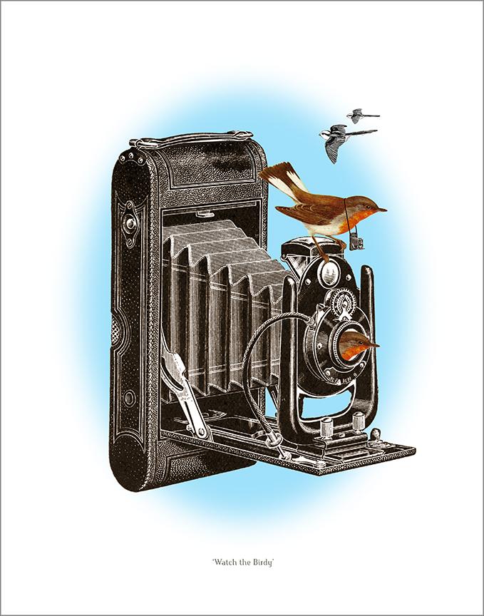 Watch the Birdy 2