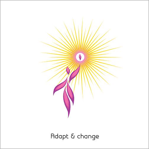 Adapt & change