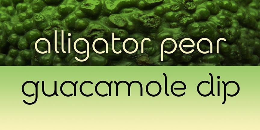 Avocado Sans banner 14