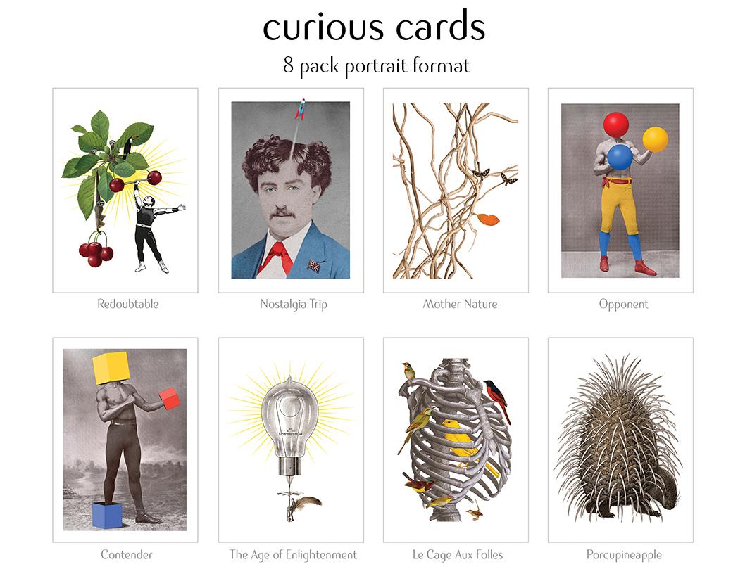 curiouscards-portait