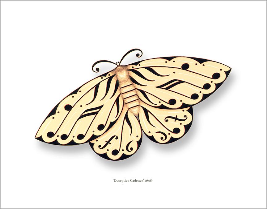Deceptive Cadence Moth