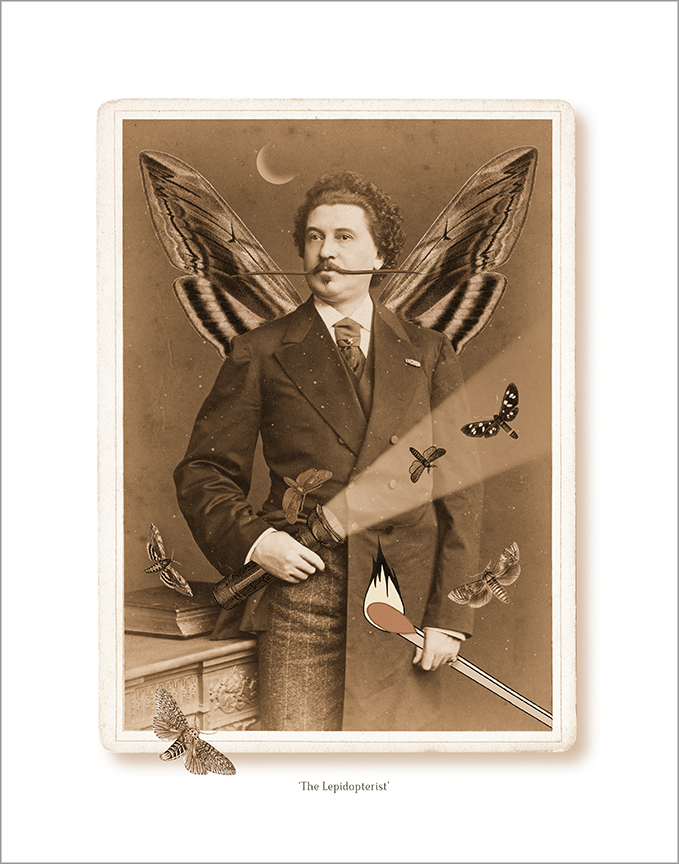 The Lepidopterist portrait