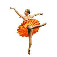 Floral Dance flag